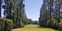 Windsor Parke Golf Club Review