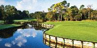 Innisbrook Golf Resort Review