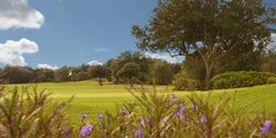 StoneGate Golf Club At Solivita