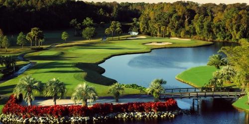 Walt Disney World Golf Complex - Palm